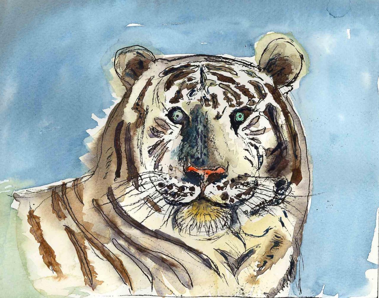 Tigre - Aquarelle sur papier - 21x32 - 2011